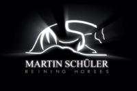 Reining Horses Trainer